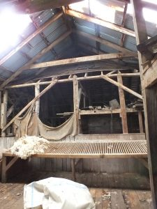 At one time the woolshed roof was shingles, some remain as shown in this photograph.