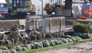 Napier_Marine_Parade-flood_protection_work